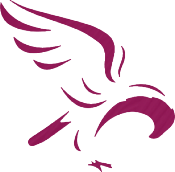 Il logo del Doha Cycling Team