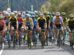 Completato l'organico della Mitchelton-Scott © Getty Images